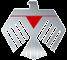 Thunderbird Group